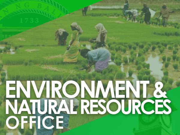 environment-natural-resources-office-baliwag-bulacan