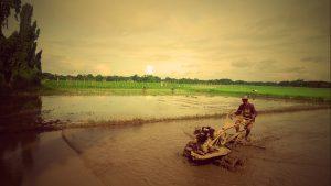 farming-baliwagbulacan