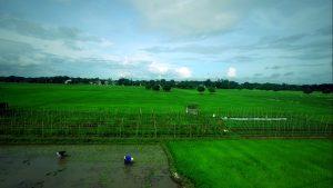 farmland-baliwagbulacan
